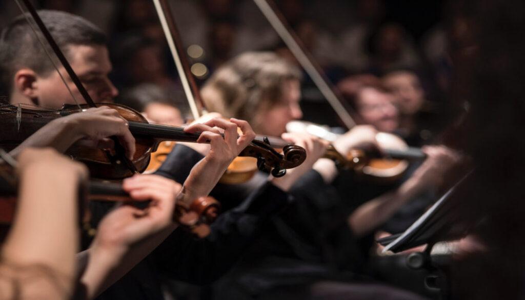 live violinists